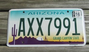 Arizona Sunset Cactus License Plate Grand Canyon State 2017 BBC 3961