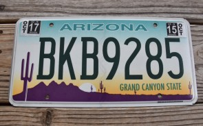 Arizona Sunset Cactus License Plate Grand Canyon State 2017 BKB 9285