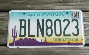 Arizona Sunset Cactus Embossed License Plate Grand Canyon State 2015 CE 51565