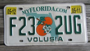 Florida Double Orange My Florida License Plate Sunshine State 2016