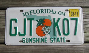 Florida Green Map License Plate 1994