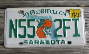 Florida Double Orange My Florida License Plate Sunshine State 2015