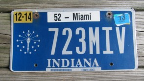 Indiana Blue White License Plate 2013
