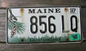 Maine Chickadee License Plate 2012