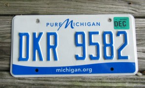 Michigan Pure License Plate 2016