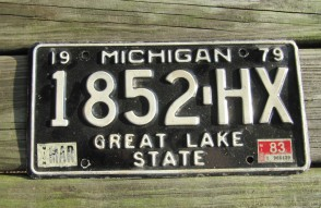 Michigan Blue White License Plate 2002 LKT 618 Great Lakes