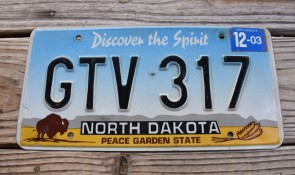 North Dakota Buffalo Discover The Spirit License Plate 2003