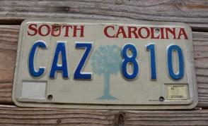 South Carolina Palm Tree License Plate 1987