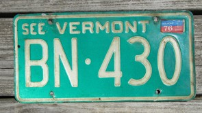 Vermont Green Mountain State License Plate GLY 119