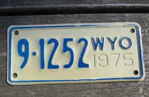 Wyoming Devils Tower License Plate 2009  28 DLN