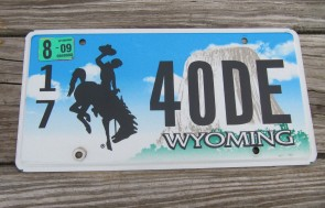 Wyoming Devils Tower License Plate 2009  1740 DE