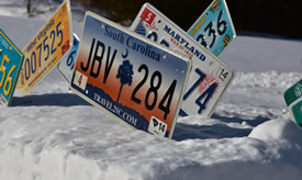 50 US State License Plates for Sale Set, Auto License Plates for Sale, Motorcycle License Plates