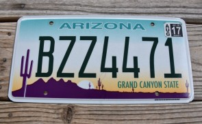 Arizona Sunset Cactus License Plate Grand Canyon State 2017 BZZ 4471