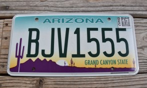 Arizona Sunset Cactus License Plate Grand Canyon State 2017 BJV 1555