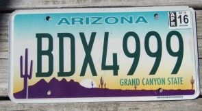 Arizona Sunset Cactus License Plate Grand Canyon State 2016