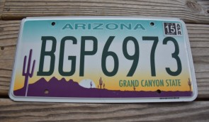 Arizona Sunset Cactus License Plate Grand Canyon State 2015 BGP 6973