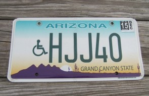 Arizona Sunset Cactus Handicapped License Plate Grand Canyon State 2015 HJJ 40
