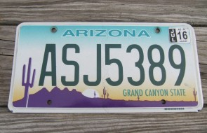 Arizona Sunset Cactus License Plate Grand Canyon State 2016 ASJ 5389