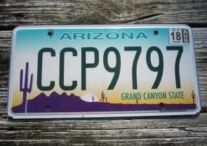 Arizona Sunset Cactus License Plate Grand Canyon State 2018