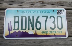 Arizona Sunset Cactus License Plate Grand Canyon State 2016