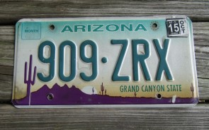 Arizona Sunset Cactus Embossed License Plate Grand Canyon State 2015