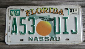 Florida Big Orange License Plate 2001