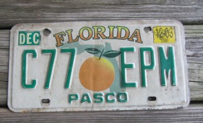 Florida Big Orange License Plate 2003