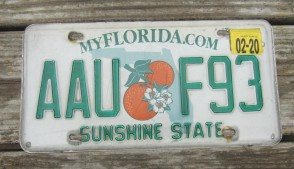 Florida Double Orange My Florida License Plate 2020 Sunshine State