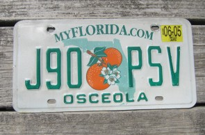 Florida Double Orange My Florida License Plate 2005 Sunshine State