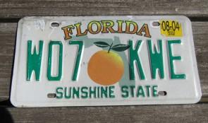 Florida Big Orange License Plate 2004