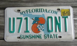 Florida Double Orange My Florida License Plate 2015 Sunshine State
