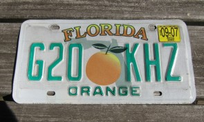 Florida Big Orange License Plate 2007