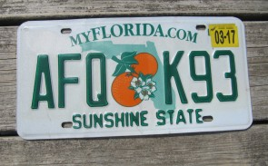 Florida Double Orange My Florida License Plate 2017 Sunshine State