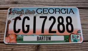 Georgia Peach State License Plate 2017