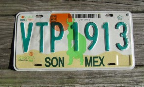Mexico Sun Desert Sonora License Plate 2000