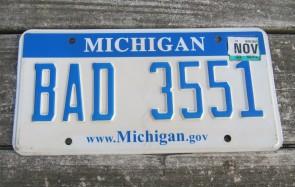 Michigan Blue White Website License Plate 2009