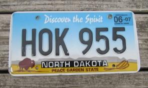 North Dakota Buffalo Discover The Spirit License Plate 2007