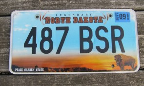 North Dakota Buffalo Legendary License Plate 2017