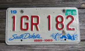 South Dakota Mount Rushmore License Plate 1991