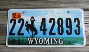 Wyoming Mountains License Plate Bucking Horse 2015