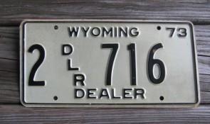 Wyoming Mountain Scene License Plate Bucking Horse 2019