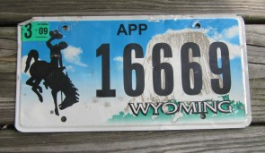 Wyoming Devils Tower Apportioned Truck License Plate 2009