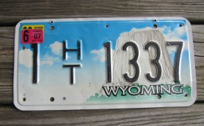 Wyoming Devils Tower House Trailer License Plate 2007