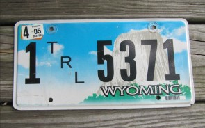 Wyoming Devils Tower Trailer License Plate 2005